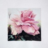 Rose 02